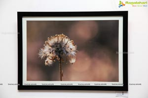 Hamstech Photography Exhibition