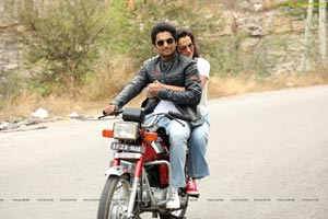 Jersey HD Movie Gallery