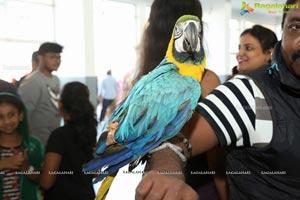 PETEX India - India's Largest Pet Expo Kicks Off at Hitex