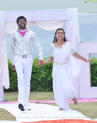 Nenu Naa Nagarjuna HD Movie Gallery