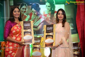 Golden Harvest Sona Masuri Rice