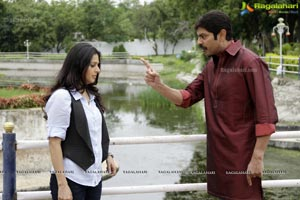 April Fool Movie Gallery