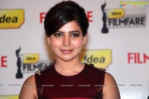 61st Idea Filmfare Awards 2013