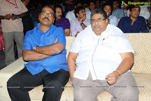 Trivikiram's Julayi Audio Release Functions