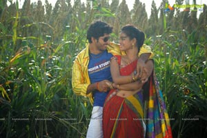Jollyga Enjoy Cheddam Movie Gallery