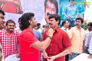 Nandamuri Balakrishna 2013 Birthday Celebrations