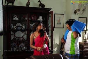 Telugu Movie Srimannarayana Stills