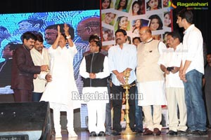 Cinema Mahila Awards 2013