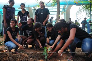 World Environment Day 2013 Celebrations