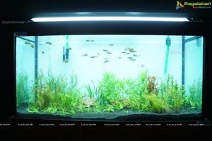 Aqua Life 2015 Exhibition