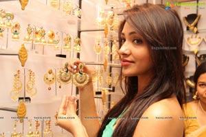 Kesha Khambhati Desire Designer Exhibition Launch
