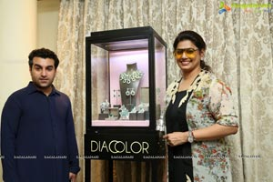 The DIACOLOR Trunk Show