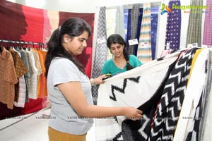 Pochampally Ikat Art Mela 2014