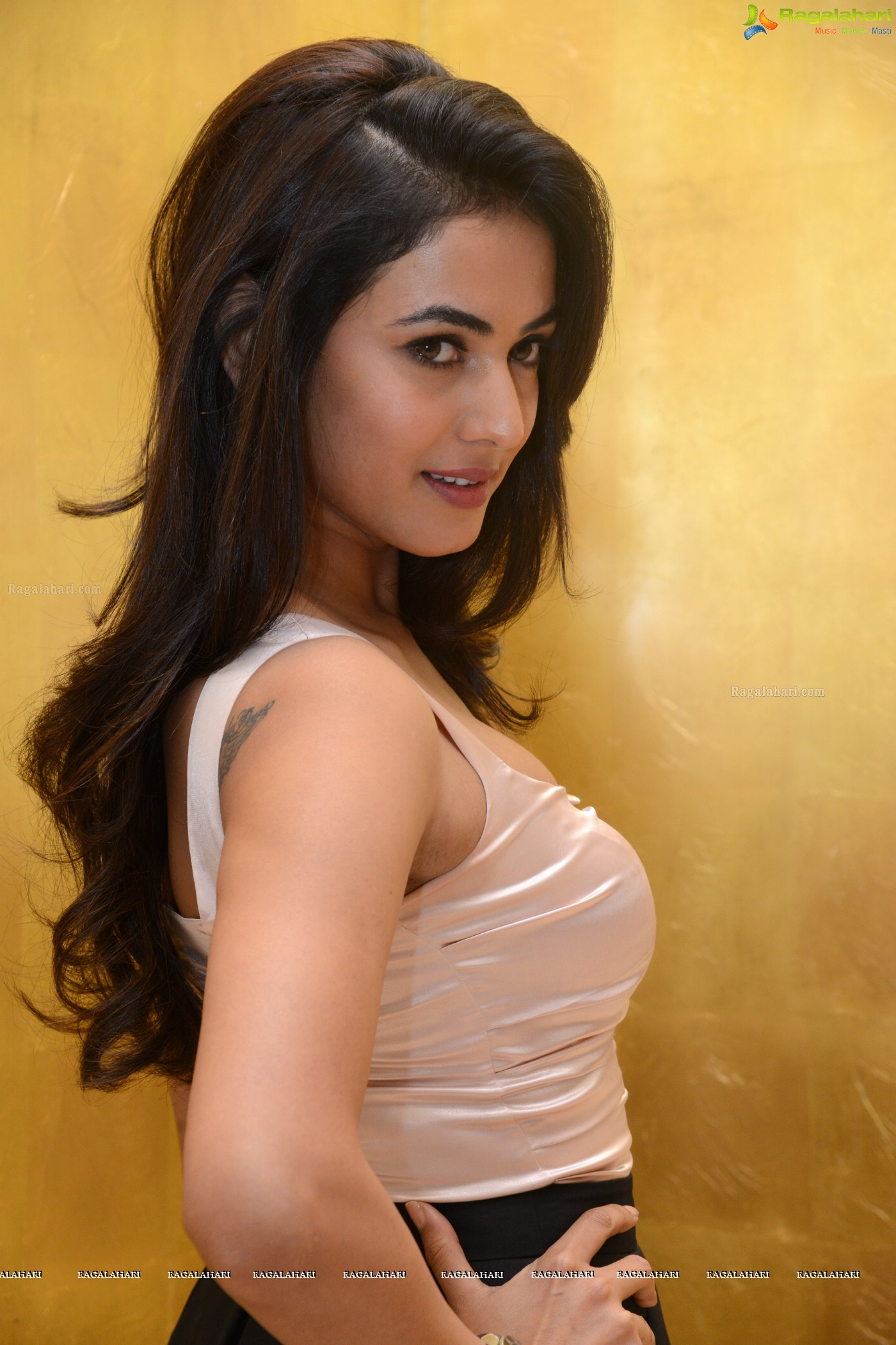 sonal chauhan (posters) image 46 | tollywood actress images,images
