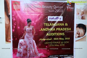 Mrs. India Beauty Queen South 2018 Auditions