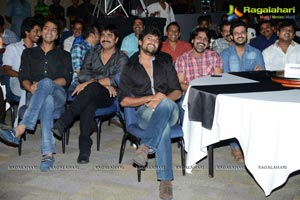 D For Dopidi Audio Release